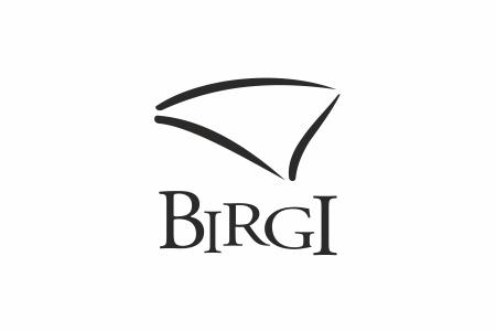 Birgi